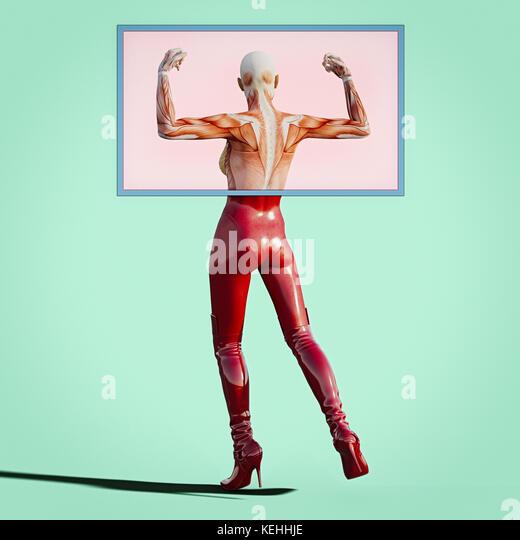 Rücken- und Armmuskulatur der Frau Stockbild