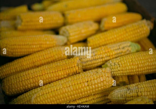 Stapel von Mais auf Cob Stockbild