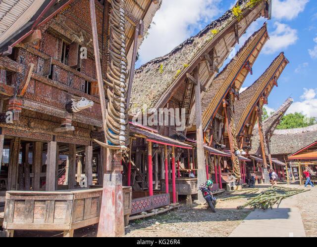 Reihe von traditionellen Häusern (tongkonan), Tana Toraja, Sulawesi, Indonesien, Südostasien, Asien Stockbild