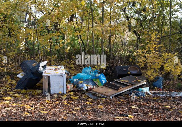 Berlin, Deutschland. 17. Nov, 2017. sperrigen Müll auf der Seite liegend auf einem Pfad in ein Stück Wald Stockbild