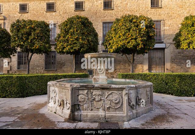 Brunnen in einem ruhigen Platz in Úbeda, Andalusien mit einem Hintergrund von Orangenbäumen Stockbild