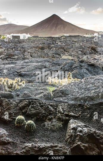 Blick von Casa Cesar Manrique Museum von Manrique Foundation zu Lavafelder, Lanzarote, Kanarische Inseln, Spanien Stockbild