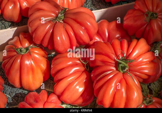 Tomaten am Marktstand, Cours de Selaya, Nizza, Alpes Maritimes, Provence, Côte d'Azur, Mittelmeer, Frankreich, Stockbild
