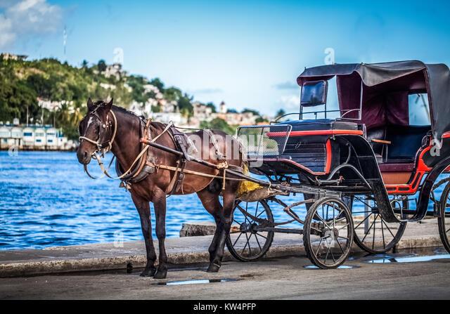Karibik Kuba Havanna Kutschenanhänger mit Pferd Stockbild