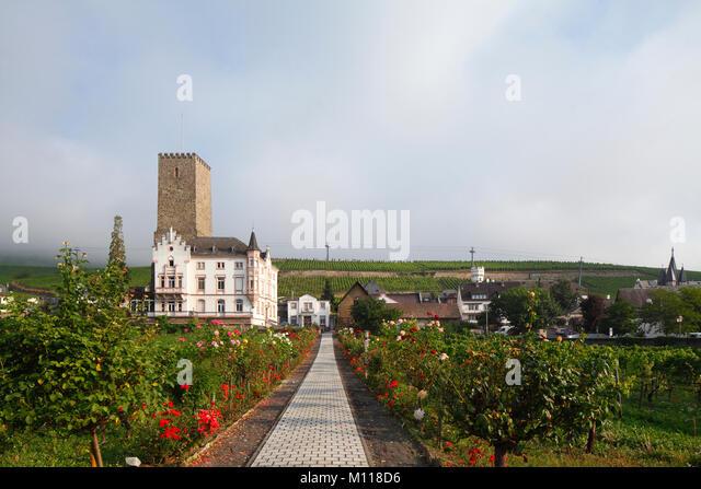 Boosenburg, Oberburg, Rüdesheim, Hessen, Deutschland, Europa ich Boosenburg, Oberburg, Rüdesheim am Rhein, Stockbild