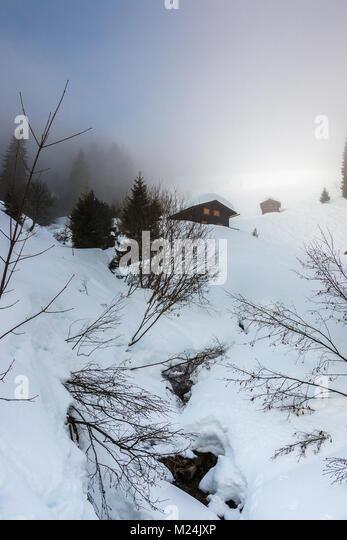Schnee und Little Creek in den Bergen Stockbild