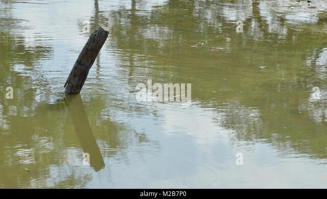 Entwässern Kanal auf Sommer in Thailand Stockbild