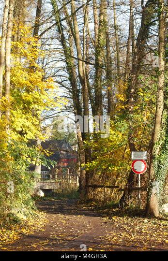 Diedrich-Speckmann-Weg im Herbst am Fluss Wümme, Fischerhude, Niedersachsen, Deutschland Ich Herbst in Fischerhude, Stockbild