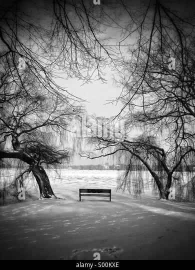 Bank auf gefrorenen See Stockbild
