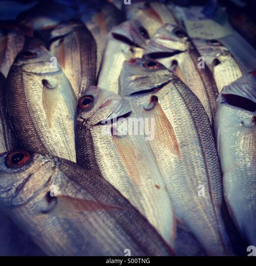 Frischer Fisch auf dem Markt vom Mittelmeer Stockbild
