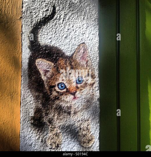 Eine Werbung mit dem Bild eines Kätzchens schmückt einen Haustiere Shop in Colonia Roma, Mexiko-Stadt, Stockbild
