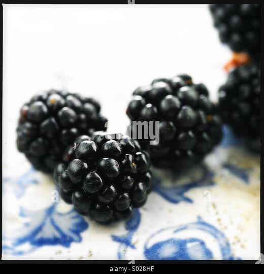 Frisch gepflückten Brombeeren Stockbild