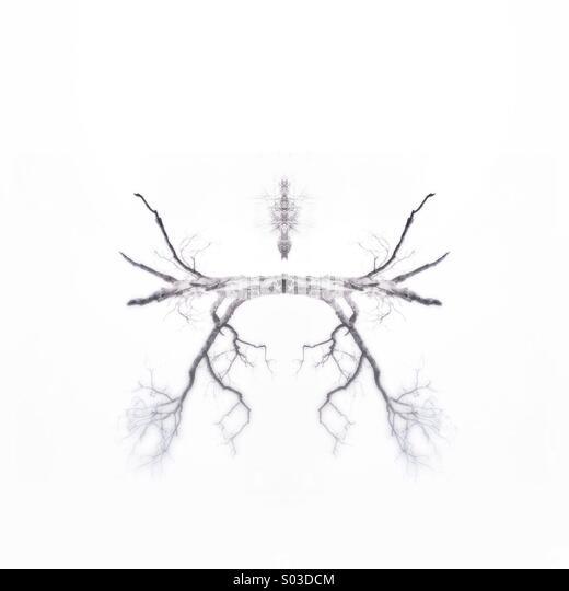 """""""Fliegende Dinge"""" abstrakte #treeart durch nidpor Stockbild"""