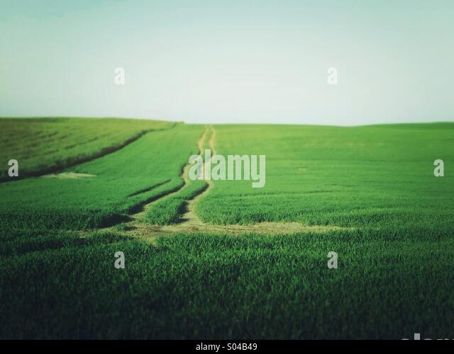 Landschaften in Landschaft Stockbild