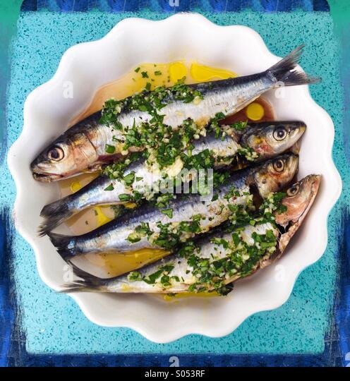 Sardinen in Olivenöl, Zitronensaft, Knoblauch und Koriander. Stockbild