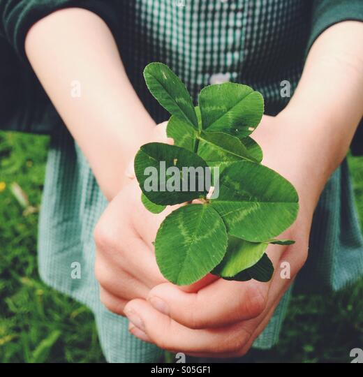Nahaufnahme des Kindes grünen Klee in Händen hält. Stockbild
