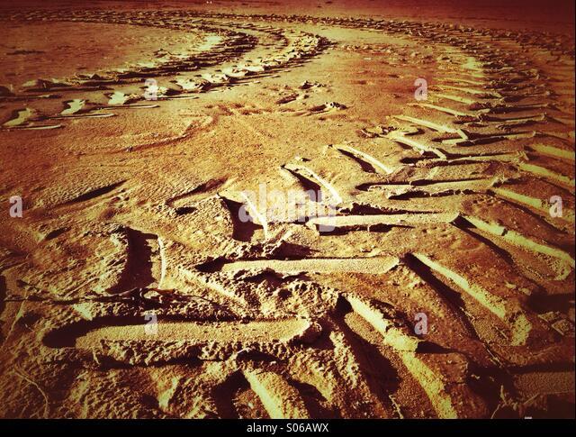 Geschwungene Traktorspuren im sand Stockbild