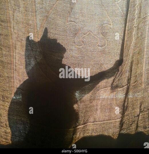 Katze Silhouette hinter einem Vorhang Stockbild