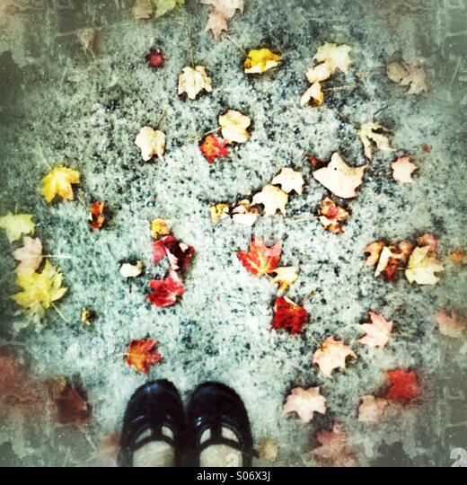 Schuhe auf dem Boden Stockbild