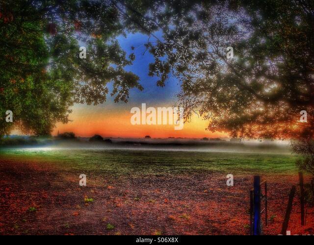 Am frühen Morgennebel in der Grafschaft Kent Stockbild