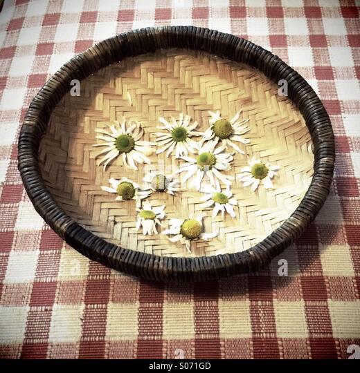 Eine geflochtene Schale mit Kamille-Blüten auf einem aufgegebenen Tischdecke Stockbild
