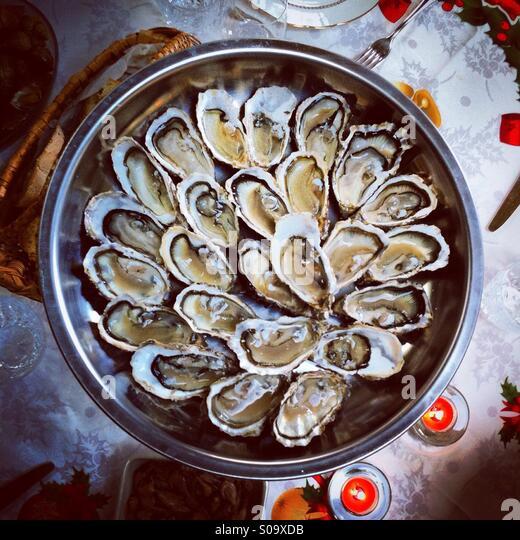 Frisch geöffnete Austern Draufsicht Stockbild