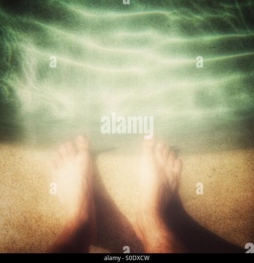 Sommer-Erinnerungen. Stockbild