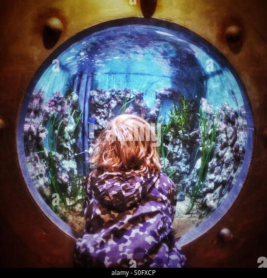 Kind auf der Suche in aquarium Stockbild
