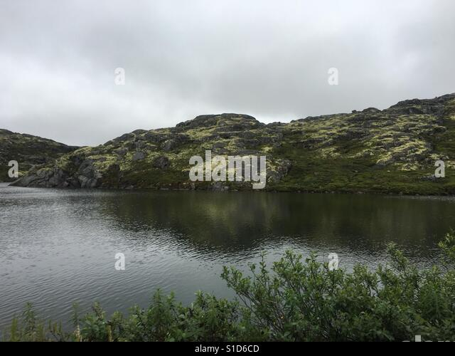 Fjorde Stockbild