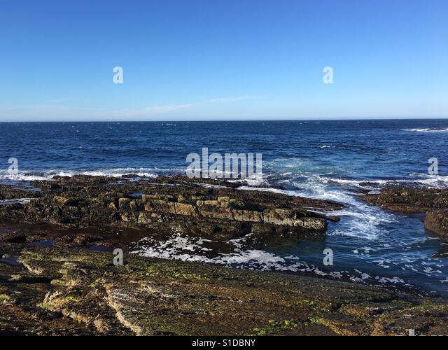 Ocean shore Stockbild