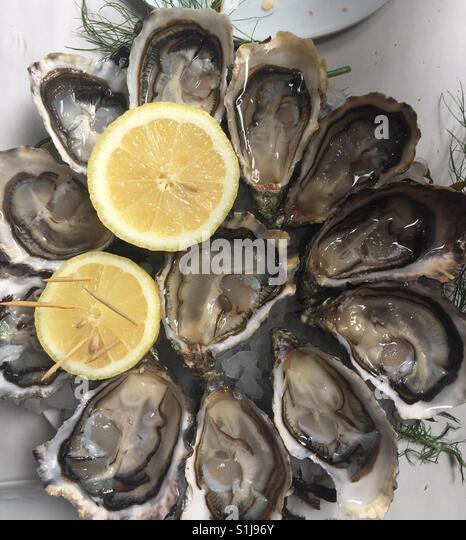 Austern essen Stockbild