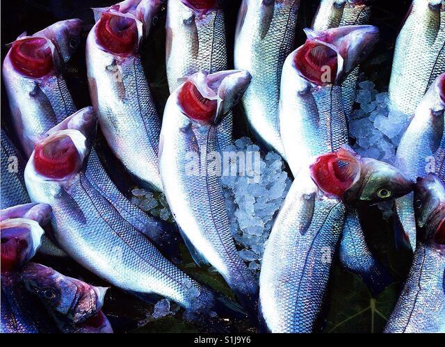 frischer Fisch auf Fisch Marktstand hautnah Stockbild