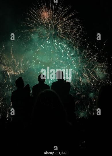 Feuerwerk mit silhouette Stockbild