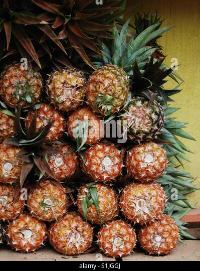 Ananas stapeln sich auf dem lokalen Markt, Puerto Vallarta, Mexiko Stockbild