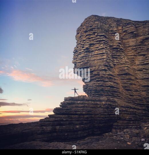 Geformte Langnickel in den Klippen Stockbild