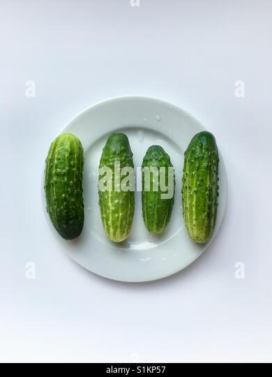 Frische grüne Gurken auf einem weißen Teller Stockbild