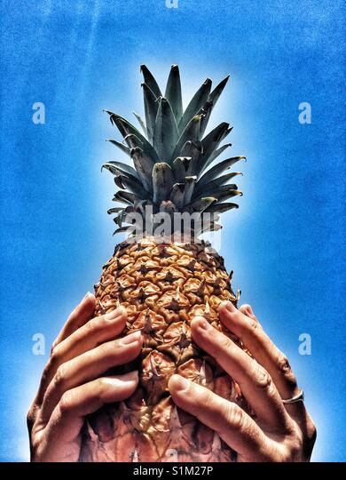 Ananas in n Hände gegen den blauen Himmel Stockbild