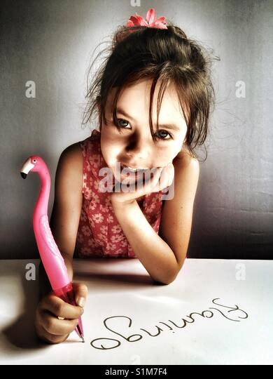Flamingo pen Stockbild