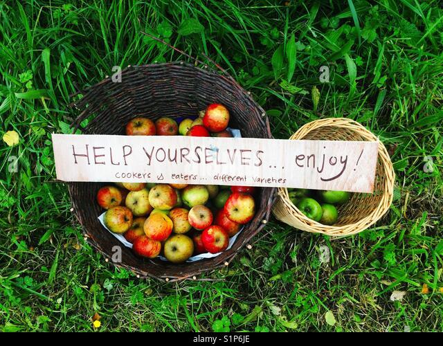 Die kostenlosen Äpfel in Körben, Hampshire, England, Vereinigtes Königreich Stockbild