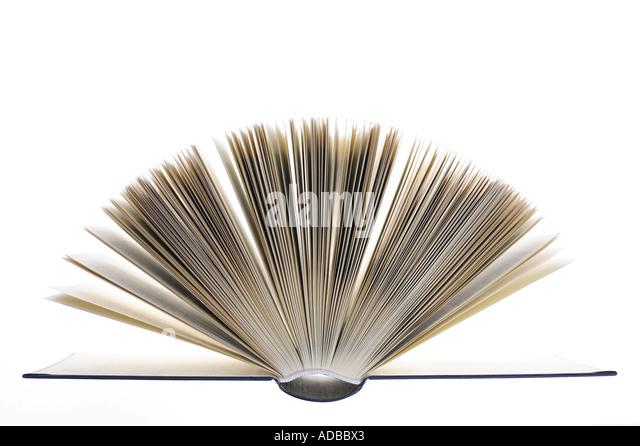 Páginas de un libro abierto. Imagen De Stock