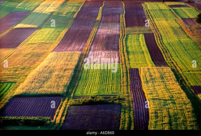 Ferme biologique sud-est de la Pologne Photo Stock