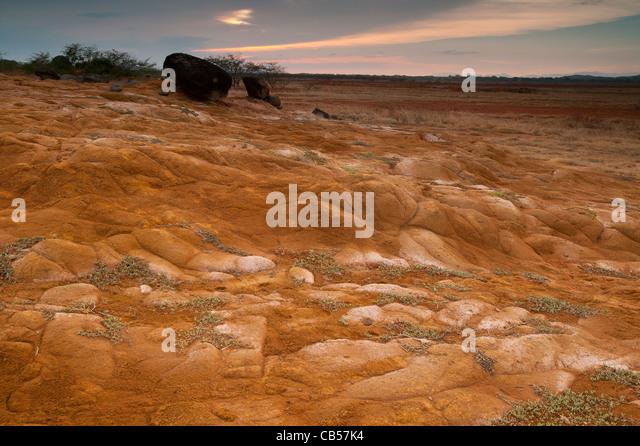 Paysage désertique dans le parc national de Sarigua, Herrera province, République du Panama. Photo Stock