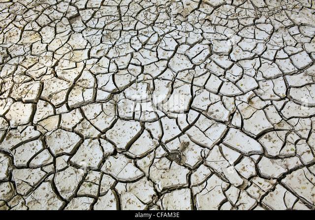 Argila lama rachado no Vale do Rio Vermelho. Winnipeg, Manitoba, Canadá. Imagens de Stock