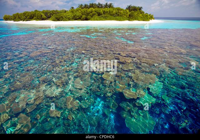 Placas de coral, lagoa e ilha tropical, Maldivas, Oceano Índico, Ásia Imagens de Stock