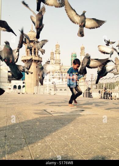 Little boy assustando distância pombos na frente de uma mesquita Imagens de Stock